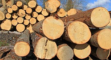 Система переработки древесных отходов